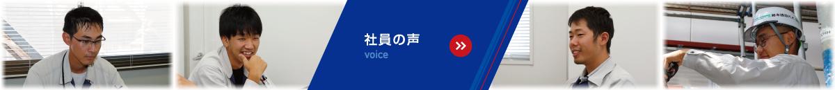 社員の声 voice